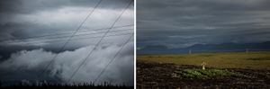Electric lines, Northern Peninsula; Scarecrow, Northern Peninsula
