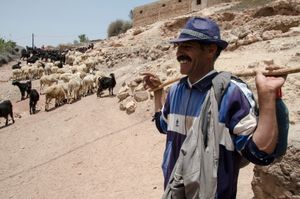 The Shepherd. Bzou, Morocco