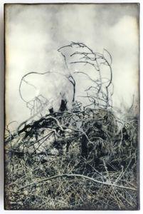 Burn, 2014