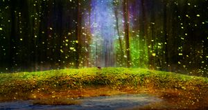 Fireflies Over Moss