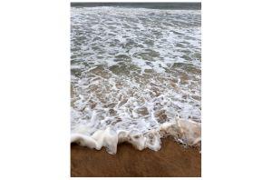 The Beach at Indian Wells, East Hampton, NY