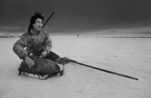 Hunter Ole Neylsen looking for a polar bear on the ice in Thule. © Ragnar Axelsson