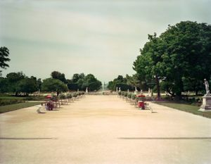 Jardin des Tuileries, 2013 © Ambroise Tezenas, Galerie melanieRio