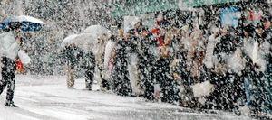 """Snowstorm"""