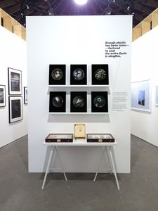 """Installation of """"Beyond Drifting: Imperfectly Known Animals"""" presented by East Wing Gallery at Unseen Photo Fair Amsterdam 2016"""