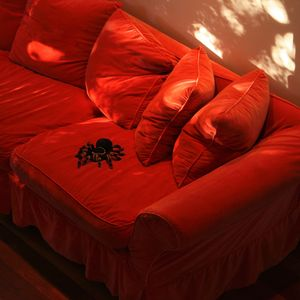 Domestic Tarantula © Doris Mitsch