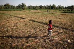 Nubian farm