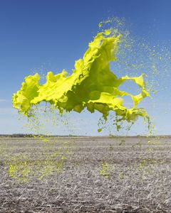 Yellow, Colourant series, 2014. Showing at A. Galerie. Courtesy Art Paris Art Fair.