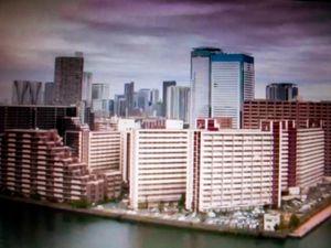 Mass Surveillance, Tokyo, Japan, 2011. Photographic Still of Live Streaming Webcam © Gaialight