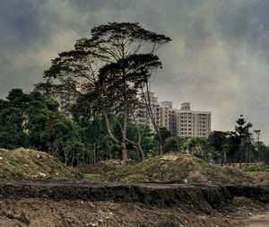 Transient Landscape # 6