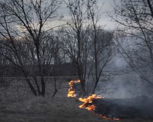 Fire. ATO zone (war zone), Ukraine, March 2015.