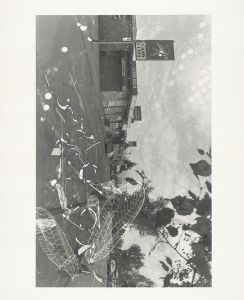 """""""Traceryscape - NZ315"""", painting on gelatin-silver print, 61x50cm, from the series Traceryscape © Aki Lumi"""