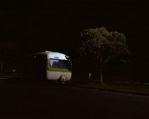 Night Light, Waterview, New Zealand