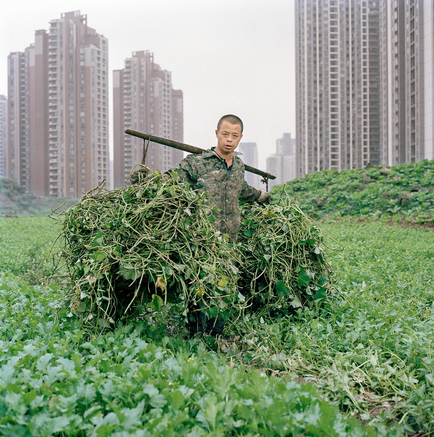 Metamorpolis: the Insatiable Sprawl of Chongqing