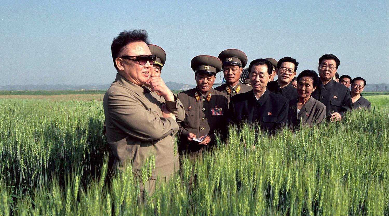 North Korean Perspectives