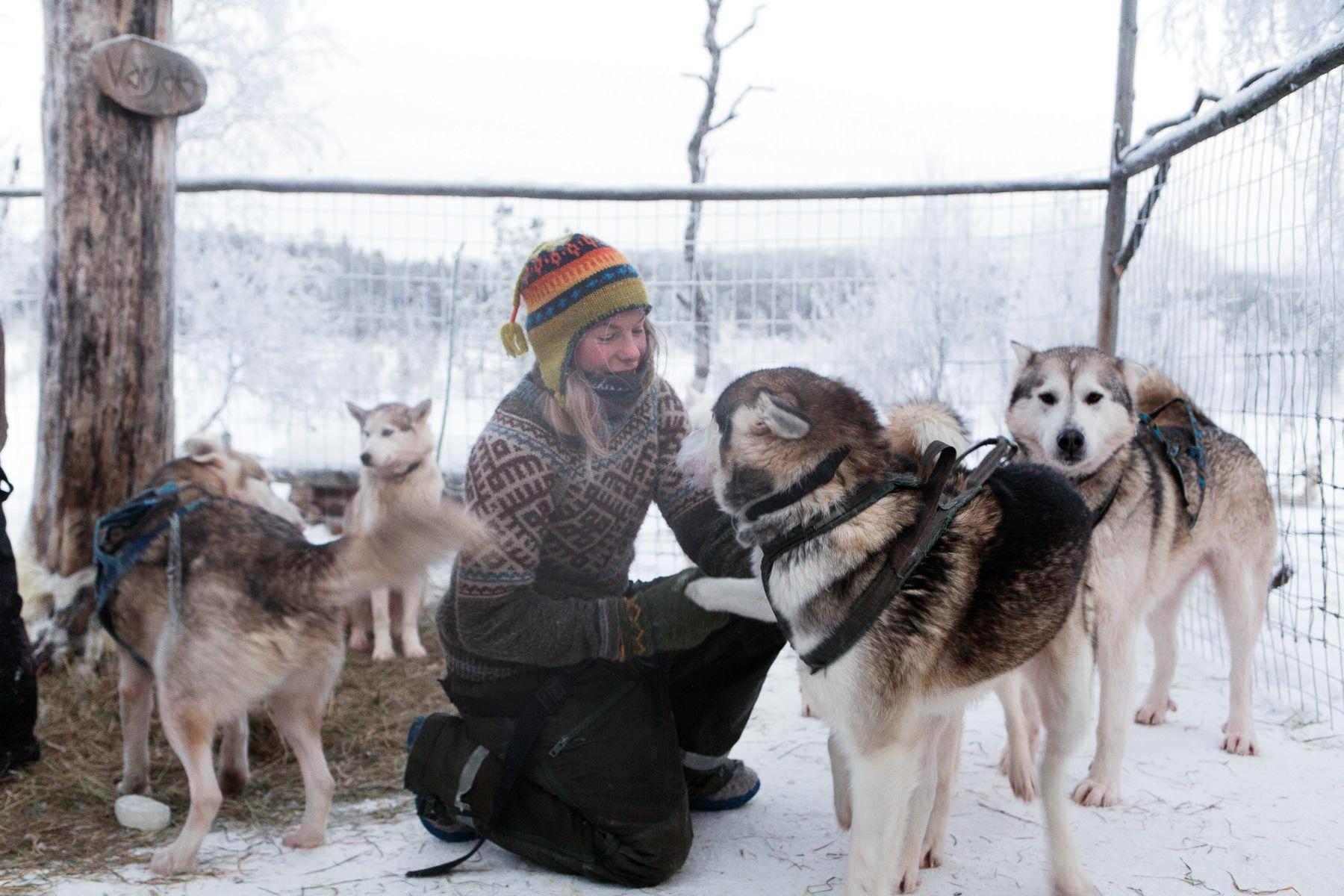 brice portolano arctic love lensculture