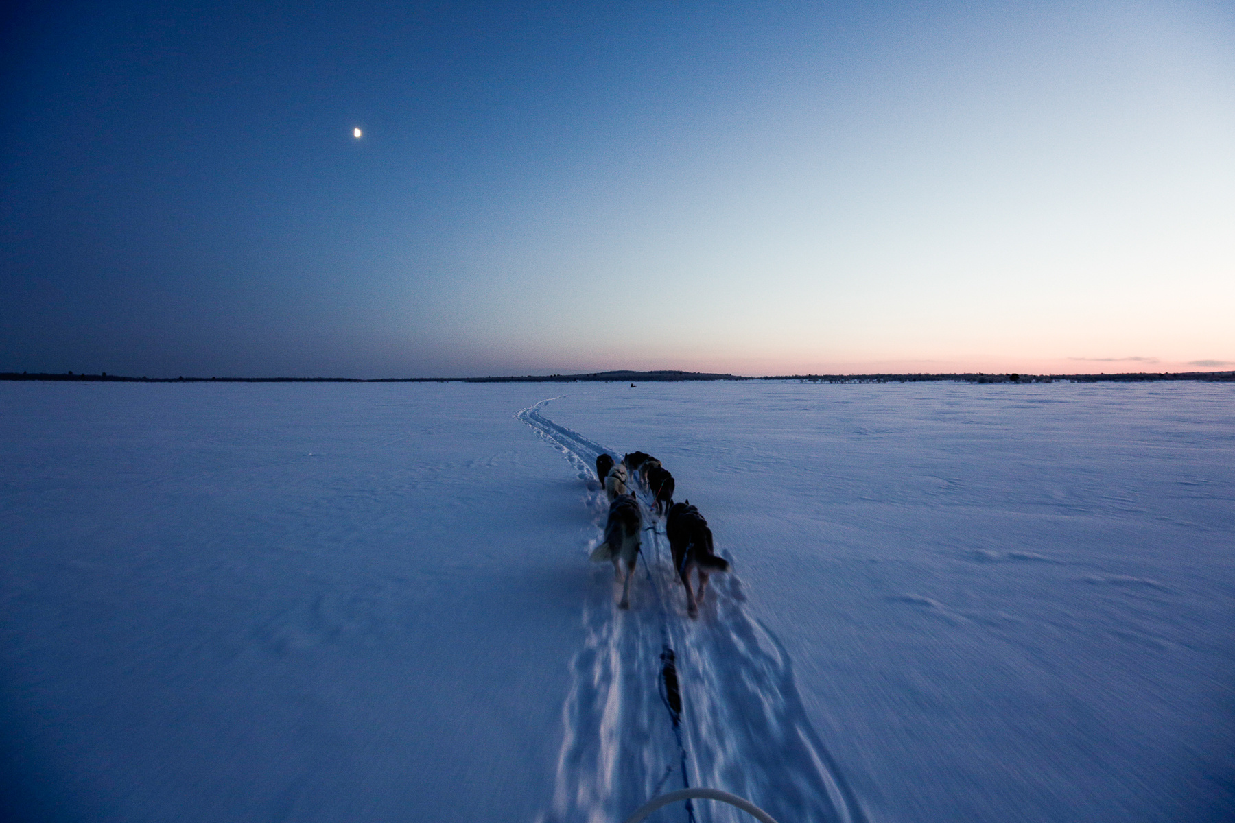 Arctic Love: Way, Way Out in the Wilderness