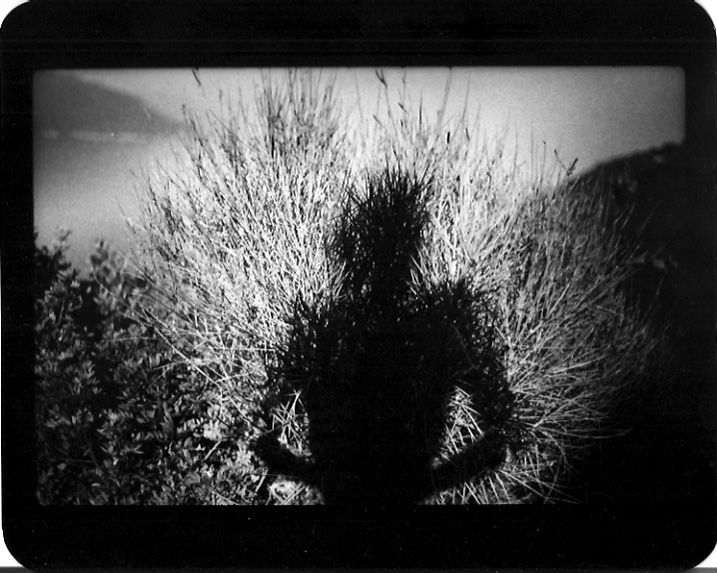 The Self and the Shadow: Photographic Self-Portraits