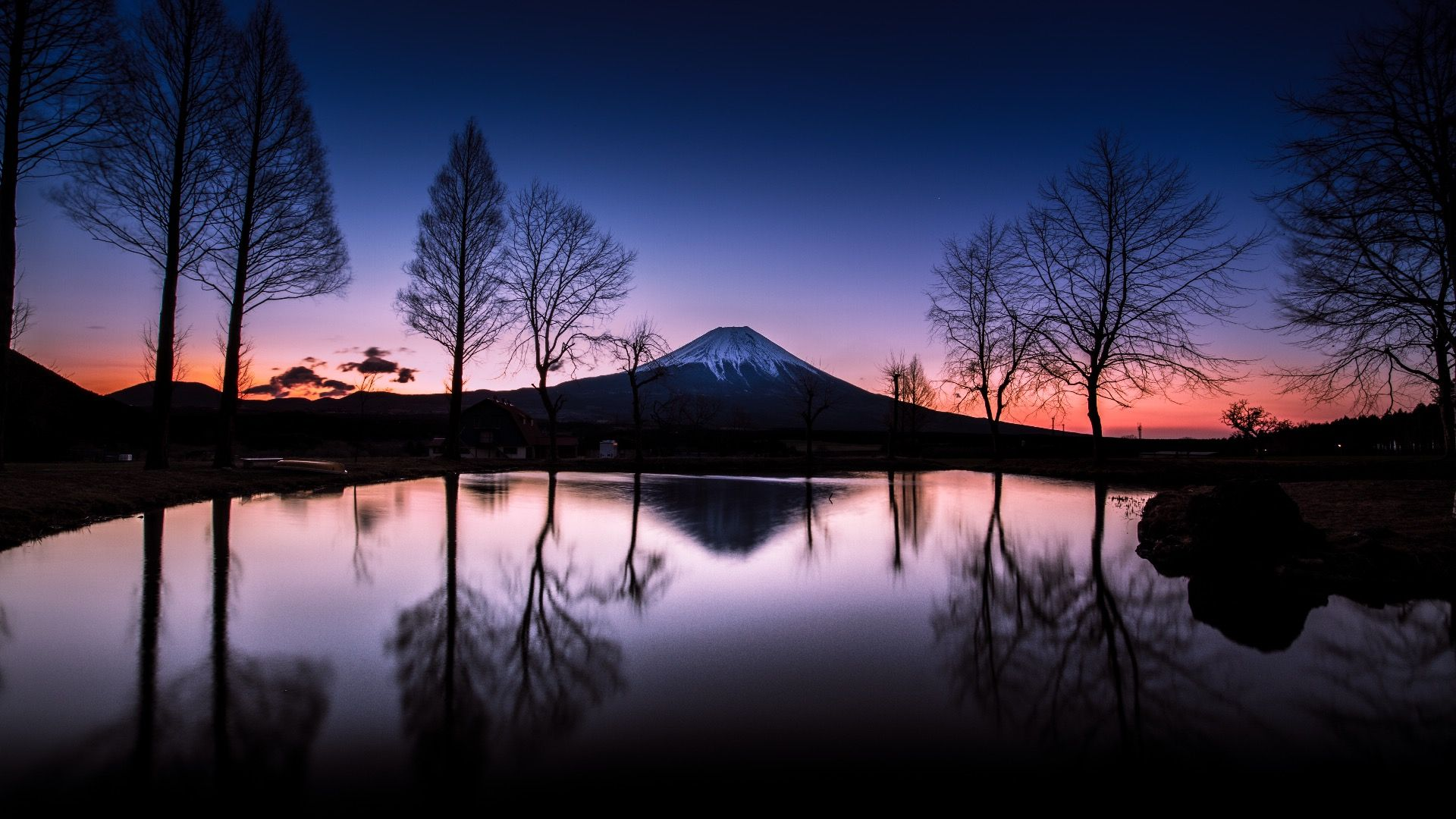 Sleeping Giants, Weeping Plums: Japanese Landscape Photography
